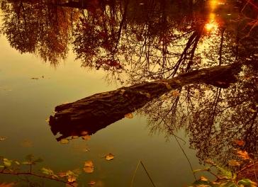 emiliano s verga 008 lago dorato
